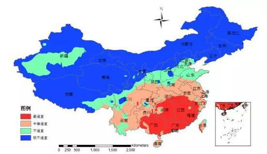 """图6 基于AHP-模糊综合评价方法的中国""""树流感""""适生分级图"""