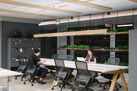 绿植的创意布置无处不在/图片来源:KhooGuoJie,StudioPeriphery