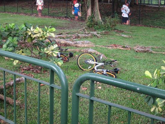单车被破坏