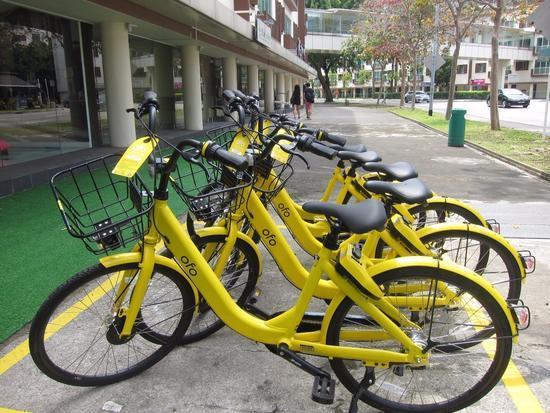 "ofo被停放在新加坡中巴鲁路边专门为停放共享单车划出的""黄格子""内 新华社记者李晓渝摄"