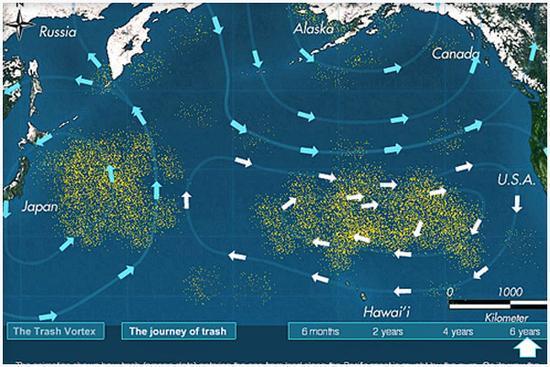 (太平洋垃圾带,图自:hococonnect)
