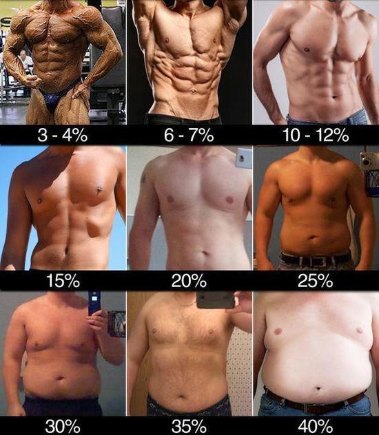 不同体脂率的身材变化