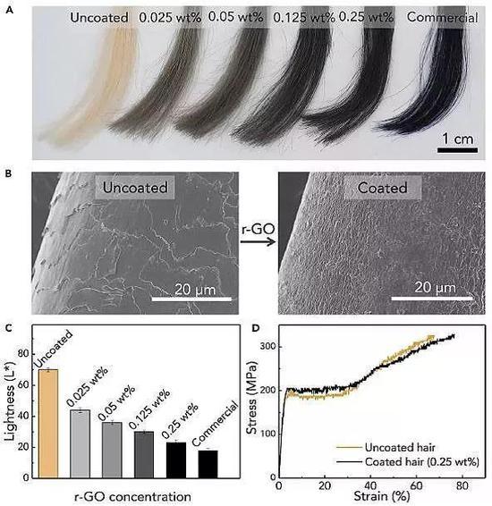 不同浓度石墨烯染发对比及SEM照片。图片来源:Chem