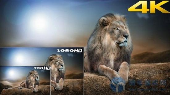 只有在大尺寸画面上,4K的效果才能更好的展现
