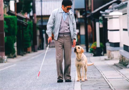 《导盲犬小Q》剧照