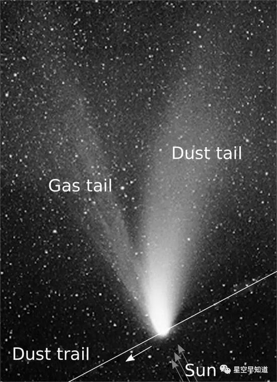 典型彗星结构示意图:包括太阳风作用下背离太阳方向的尘埃彗尾和气体彗尾  来源:wiki