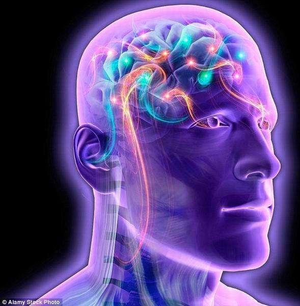 """载入其他人意识的人体,从严格意义上讲并不是人类,但它可能具备我们所认为的""""人类特征"""",例如:理性、类似人类的关注和情感,它可能像人类一样。"""