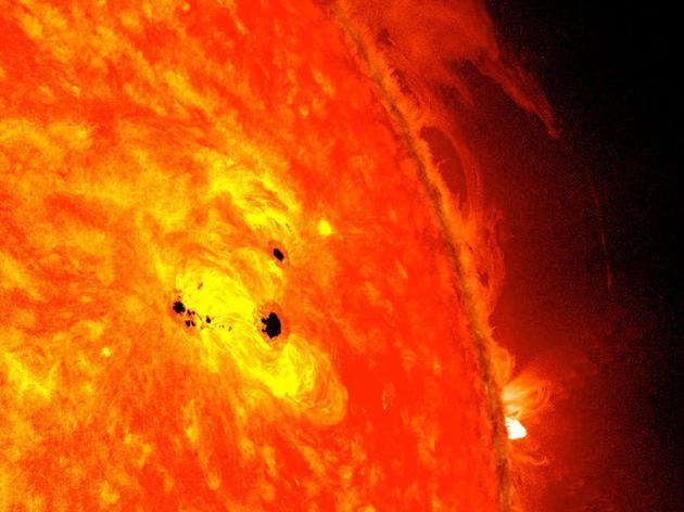 图为2013年2月迅速现身的两个太阳黑子,每个直径都相当于地球的六倍。