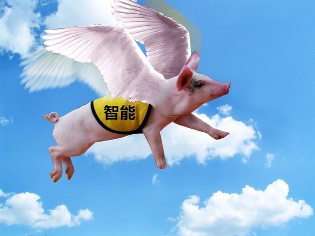 """站在风口的""""智能猪""""真能飞起来么?"""