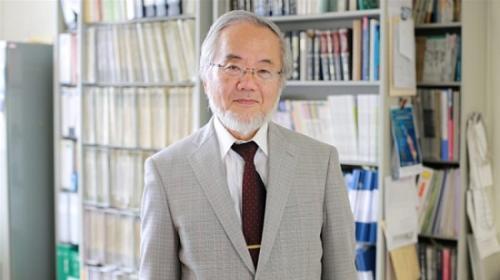 资料图:2016年诺贝尔生理学或医学奖获奖者大隅良典。