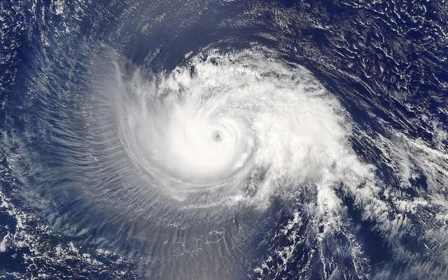 台风来袭,成熟的AI会规避风险减少损失