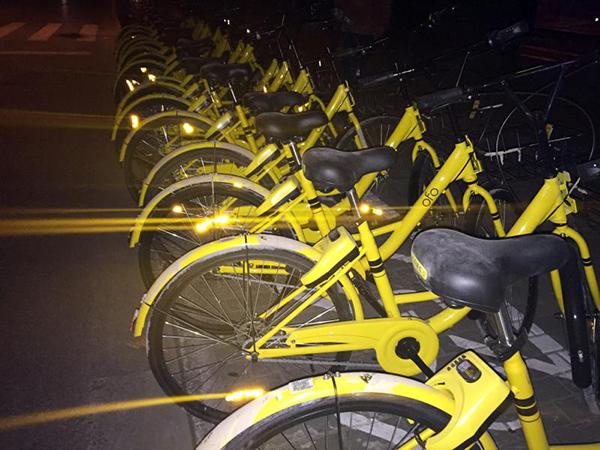 """当晚""""汇豪天下""""小区门口投放的车,除了车身有大量泥点,单车看起来都像是全新的。"""