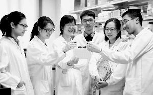胡海岚(左三)团队在实验室